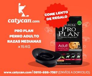 Tienda online de CatyCan